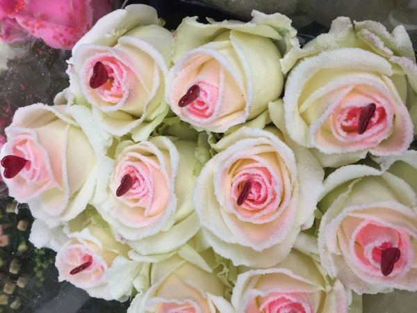 Exquisite sugared roses (FGF5)
