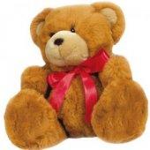 Cuddly_Teddy.jpg