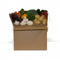 Large Vegetable Box for 3-4 People