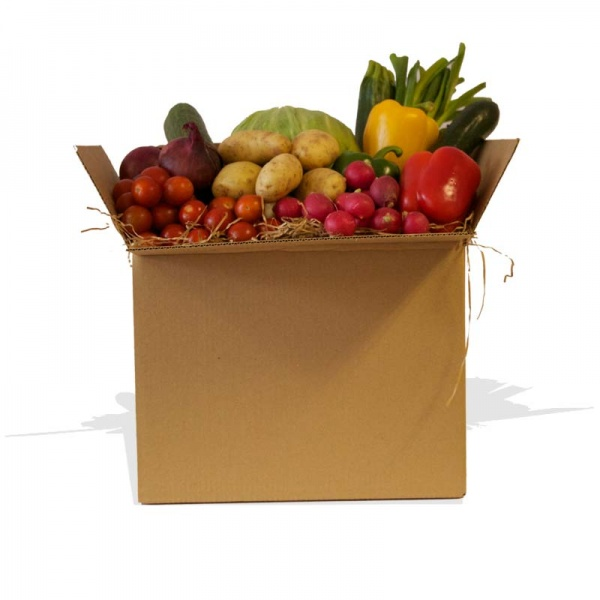 Large Salad Vegetable Box for 3-4 People